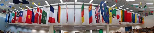Library Flags