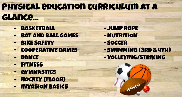 Bild des Curriculums für den Sportunterricht