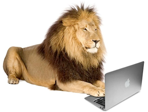 lion with computer
